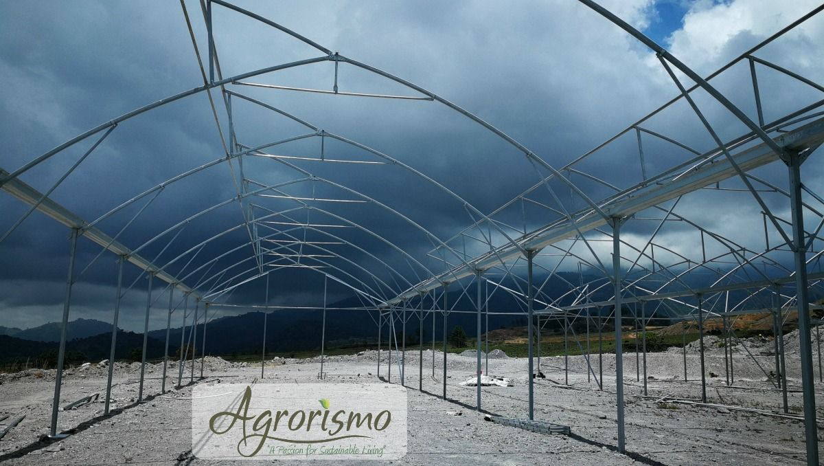 agrorismo-sustainable-living-hydroponics-panama-vulcan.jpg
