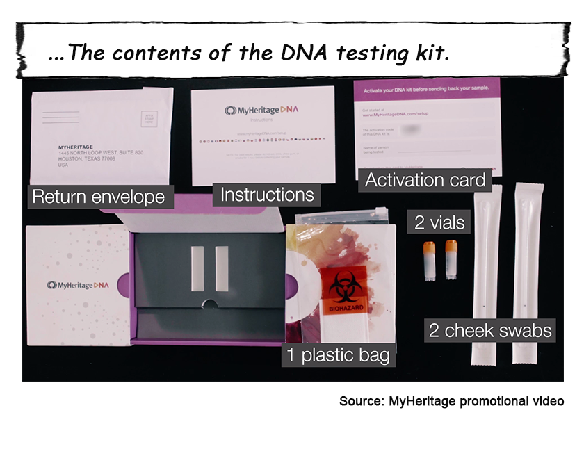 MyHeritage_DNA 5.png