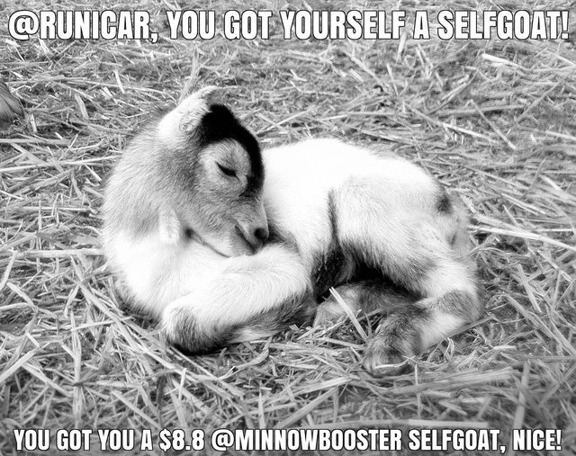 @runicar got you a $8.8 @minnowbooster upgoat, nice!