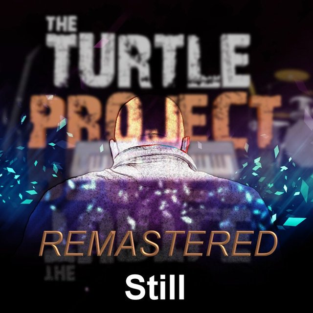 Still by The Turtle Project